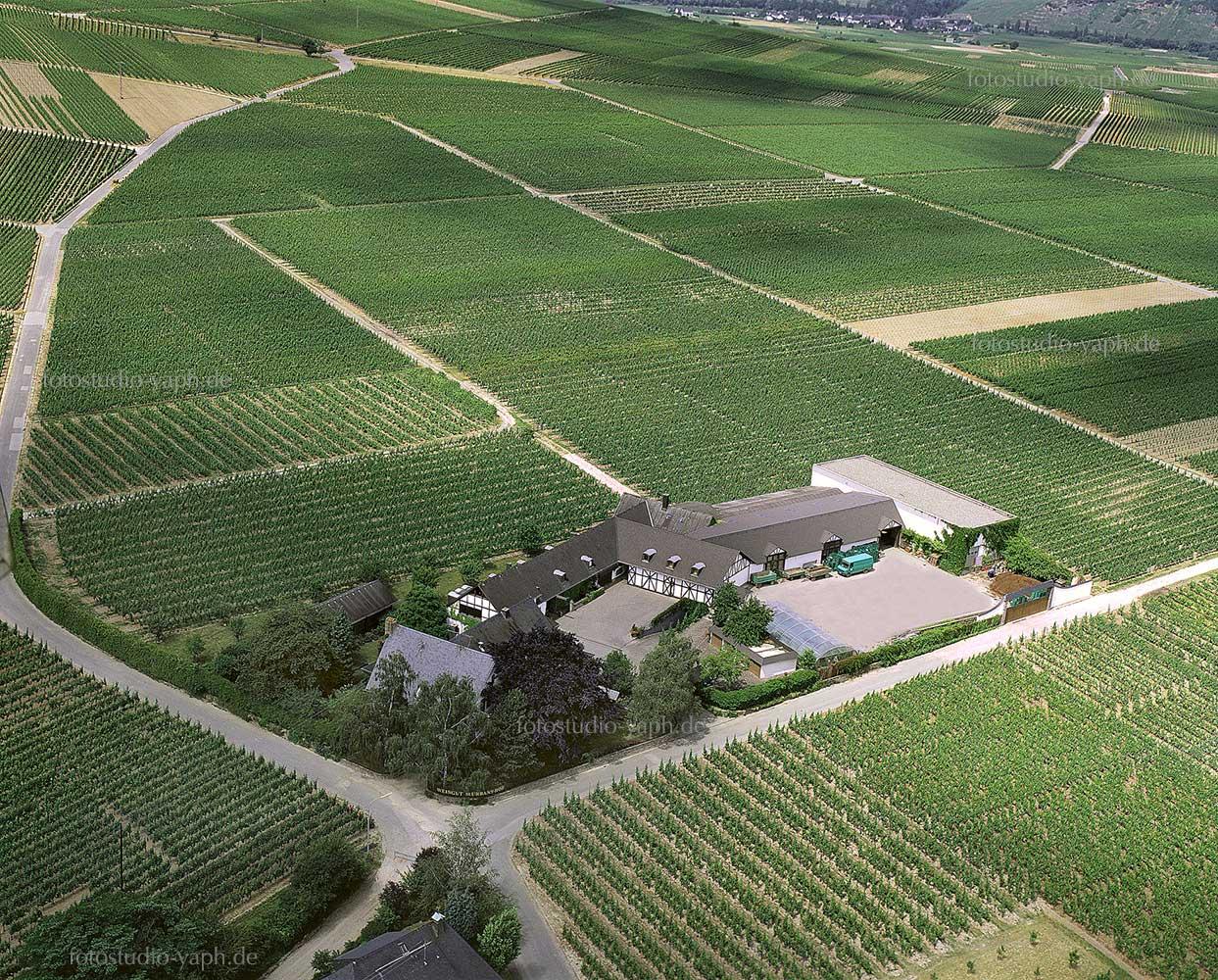 Fotograf für Architektur, Immobilien und Landschaft in Trier - Yaph- bietet Drohnenfotografie aus der Luft für Aufnahmen von Weinberg, Landschaften und Gewerbeimmobilien an.
