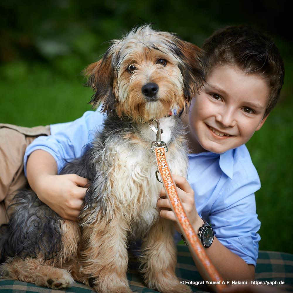 Fotoshooting mit Hunden und Hundefotos bei Photography Yaph Trier